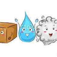 Solids, Liquids, and Gases (1st Grade)