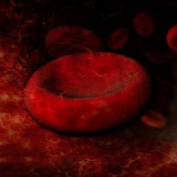 Blood Group Antibodies