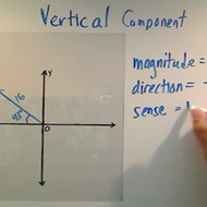 Calculating the Vertical Component