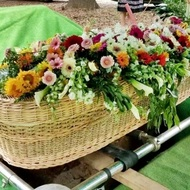 Environmentally Friendly Burial Options You Can Choose From