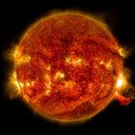 The Hottest Star