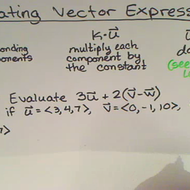 Evaluating Vector Expressions
