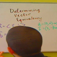 Determining Vector Equivalency