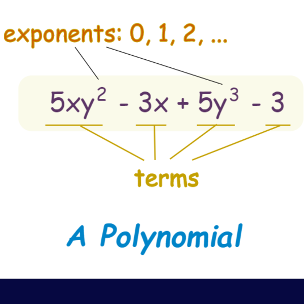 Lesson 4.2/4.3 Adding & Subtracting Polynomials