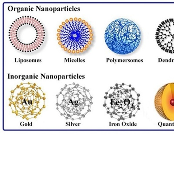sirna nanoparticles