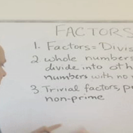 Introduction to Factors