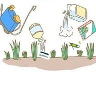 ELISA Kits for Pesticides Detection