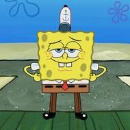 Poriferans (Sponges) Lectures