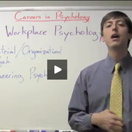 Careers in Psychology :  Workplace