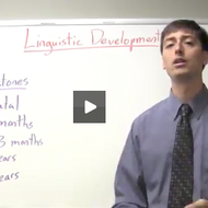 Linguistic Development