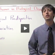 Themes in Biological Development