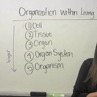 Organisms: Classification and Organization
