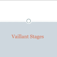 Vaillant Stages