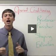Operant Conditioning Basics