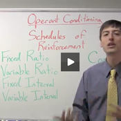 Operant Conditioning Schedules of Reinforcement