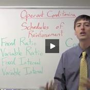 Operant Conditioning Schedules of Reinforcement