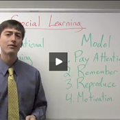 Social and Observational Learning