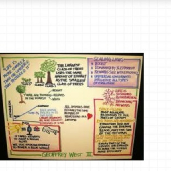 Easy to Create Graphic Organizers