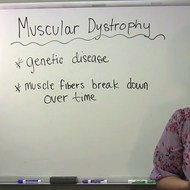 Muscle System Disorders
