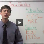 Mapping and Measuring Brain Function