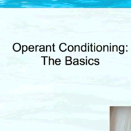 Operant Conditioning: The Basics