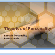 Specific Personality Assessments