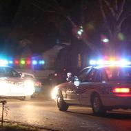 White Collar Crime and Organized Crime