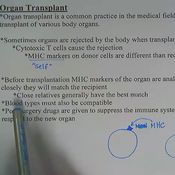 Organ Transplant and Immunotherapy
