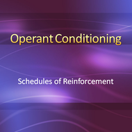 Operant Conditioning: Schedules of Reinforcement