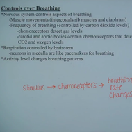 Breathing and Controls Over Breathing