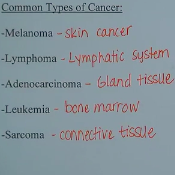Cancer and Homeostasis