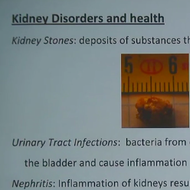 Kidney Disorders and Health