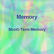 Memory:   Short-term Memory