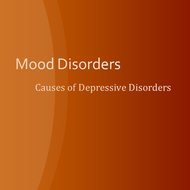 Axis I Mental Disorders:  Mood Disorders:  Situational Depressive Disorders
