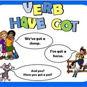 The verb Have/ has got + a/an/some/any