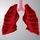 Respiratory Cycle