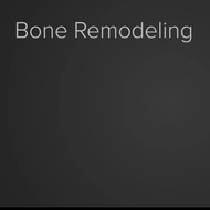 Homeostasis and Bone Remodeling