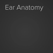 Ear Anatomy and Hearing