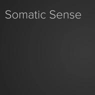 Somatic sense