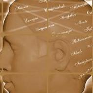 Contribuições da Teoria Multimedia de Mayer para Prática Pedagógica da Educação de Jovens e Adultos