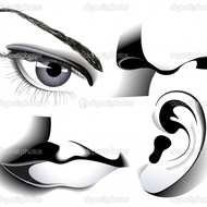 Special Senses - Part 2 Hearing