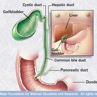 MAYO: Laparoscopic Gallbladder Removal - Dissecting the Gallbladder off the Liver Bed