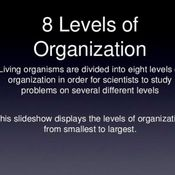 8 Levels of Organization