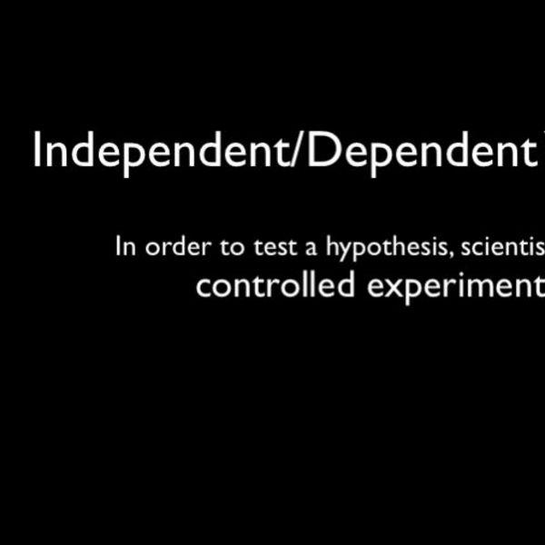 Independent/Dependent Variables