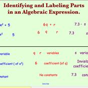 Examining Algebraic Expressions