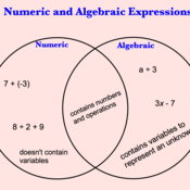Algebraic and Numeric Expressions