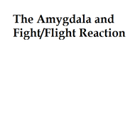 The Amygdala and Fight/Flight Reaction