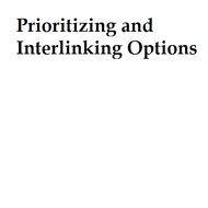 Prioritizing and Interlinking Options