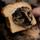 Breaded cat 1