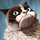 20130913150535 grumpy cat wallpaper hd 1024x819